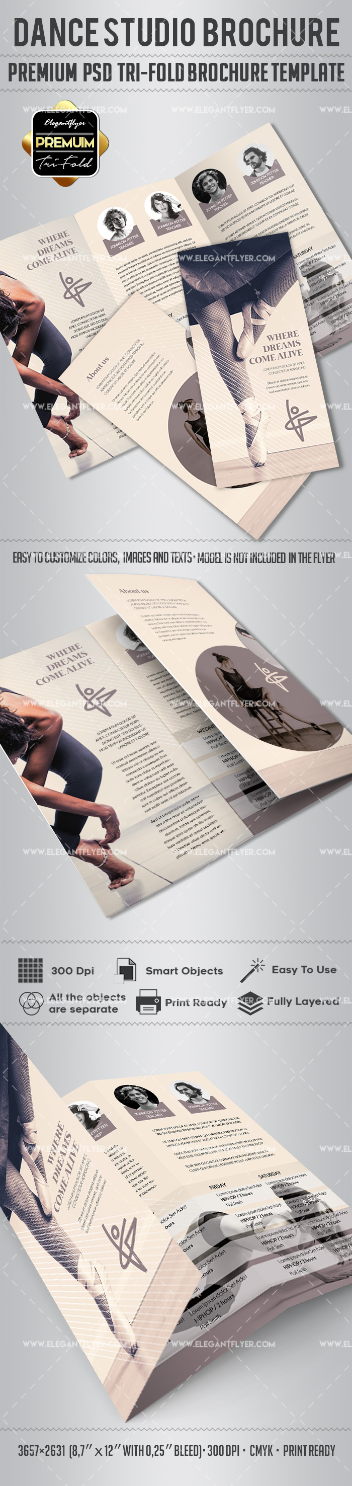 Dance Studio – Tri-Fold Brochure PSD Template