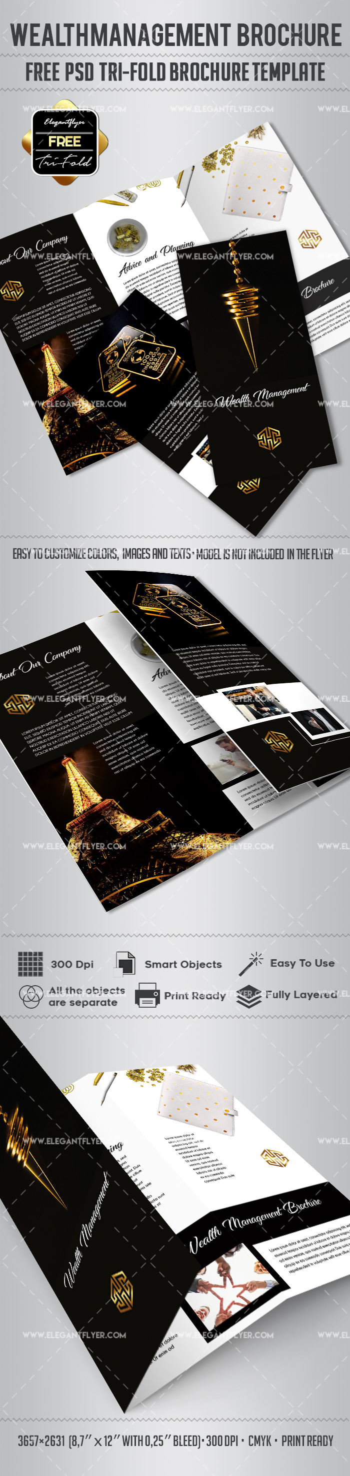 Wealth Management – Free Tri-Fold Brochure PSD Template