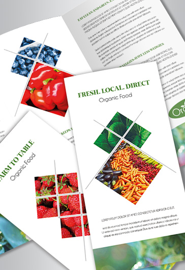 Organic Food – Tri-Fold Brochure PSD Template