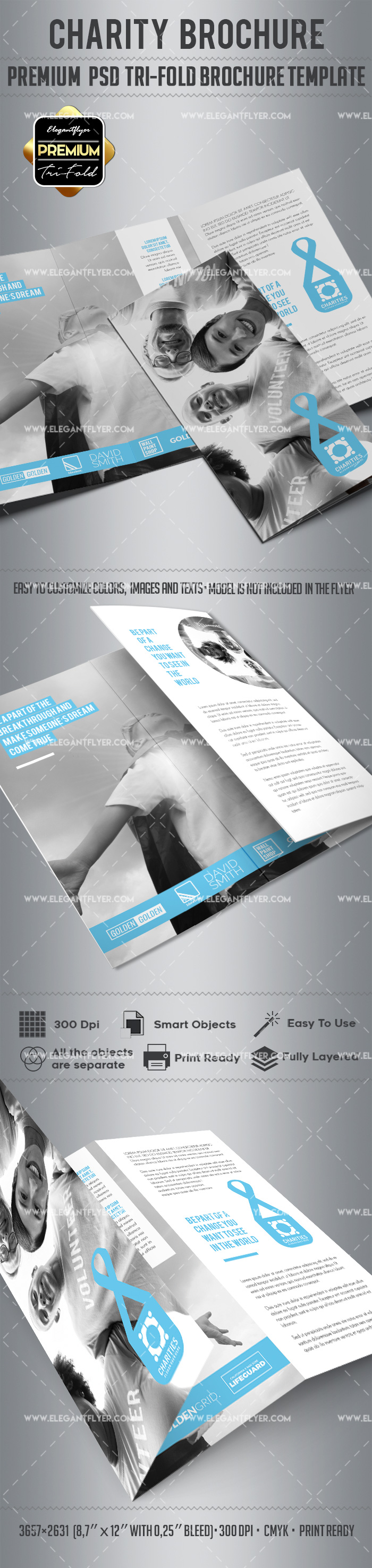 Charity – Tri-Fold Brochure PSD Template
