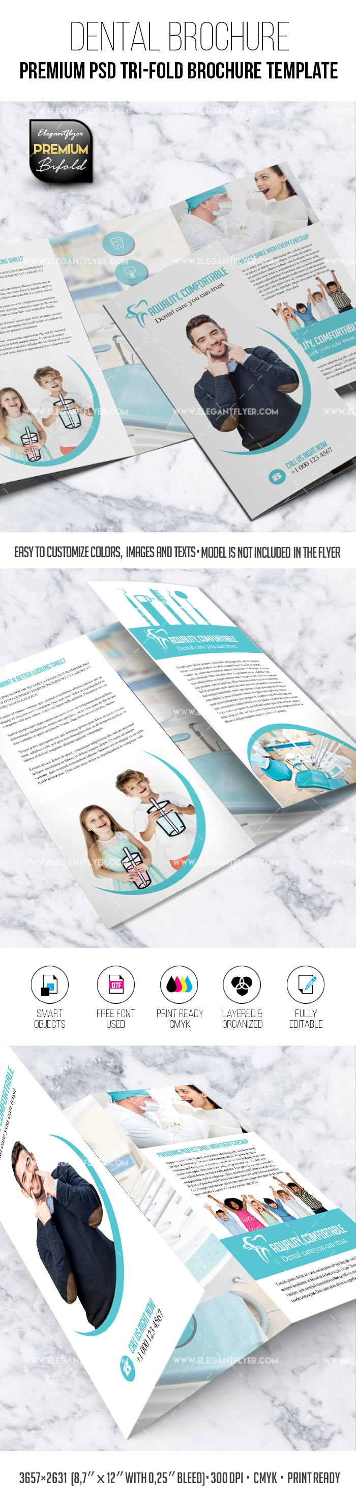 Dental – Tri-Fold Brochure PSD Template