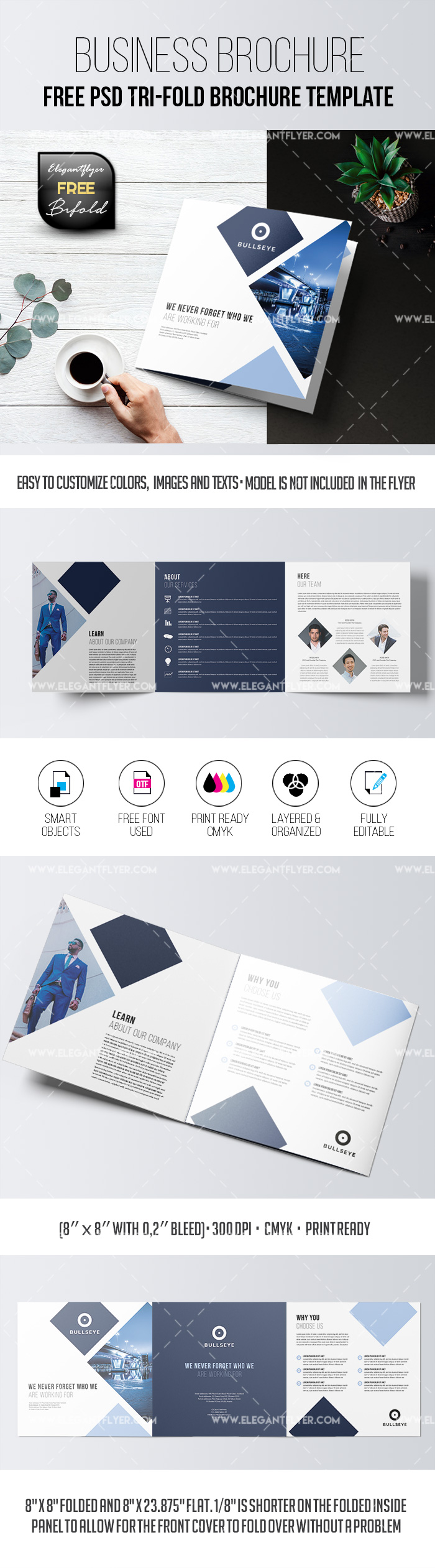 Free Business – Tri-Fold Brochure PSD Template
