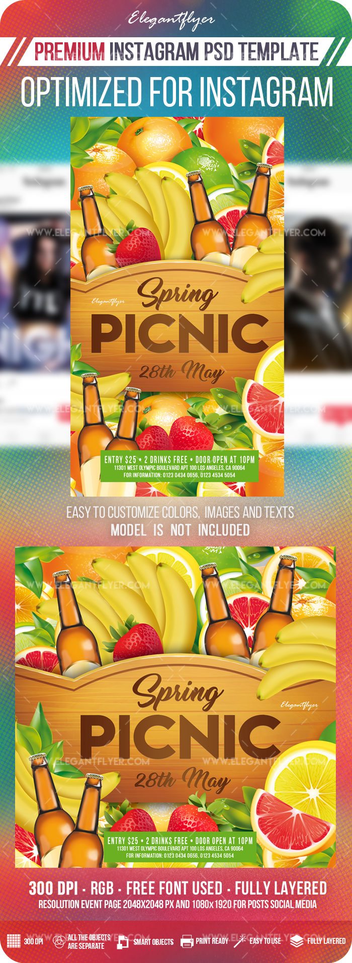 Spring Picnic – Instagram Stories Template in PSD + Post Templates