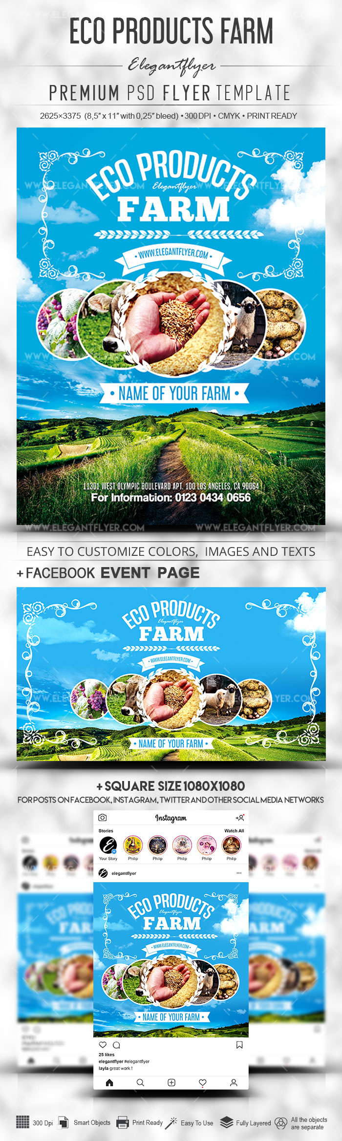 Eco Products Farm – PSD Flyer Template + Facebook Cover + Instagram Post