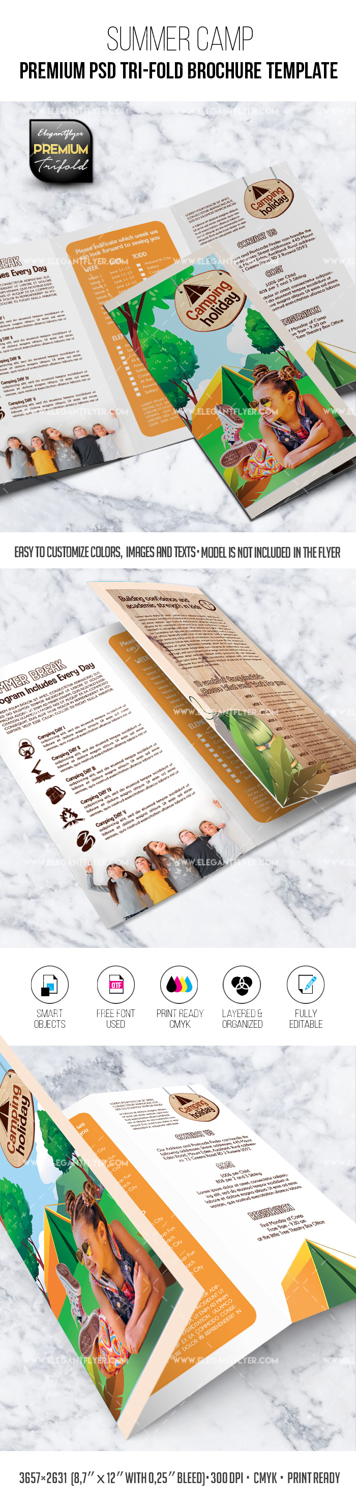 Summer Camp – Tri-Fold Brochure