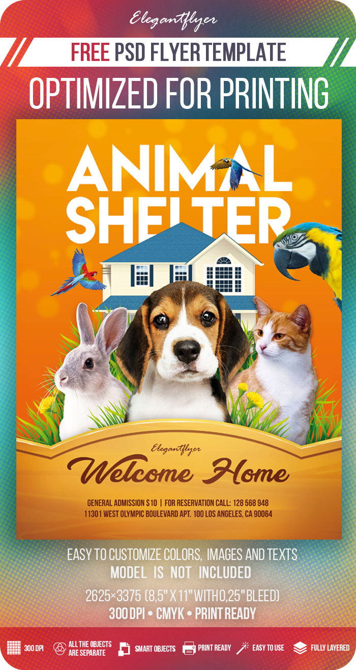 Animal Shelter – Free PSD Flyer Template