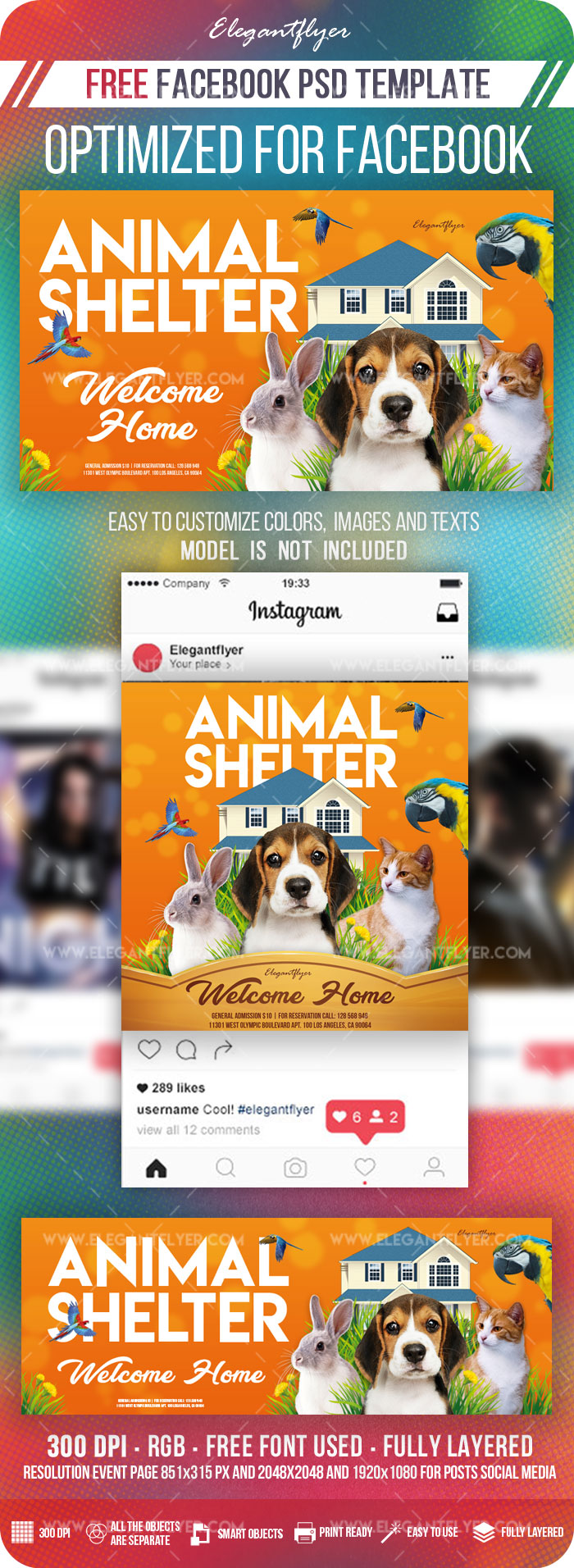 Animal Shelter – Facebook Cover Template in PSD + Post + Event cover
