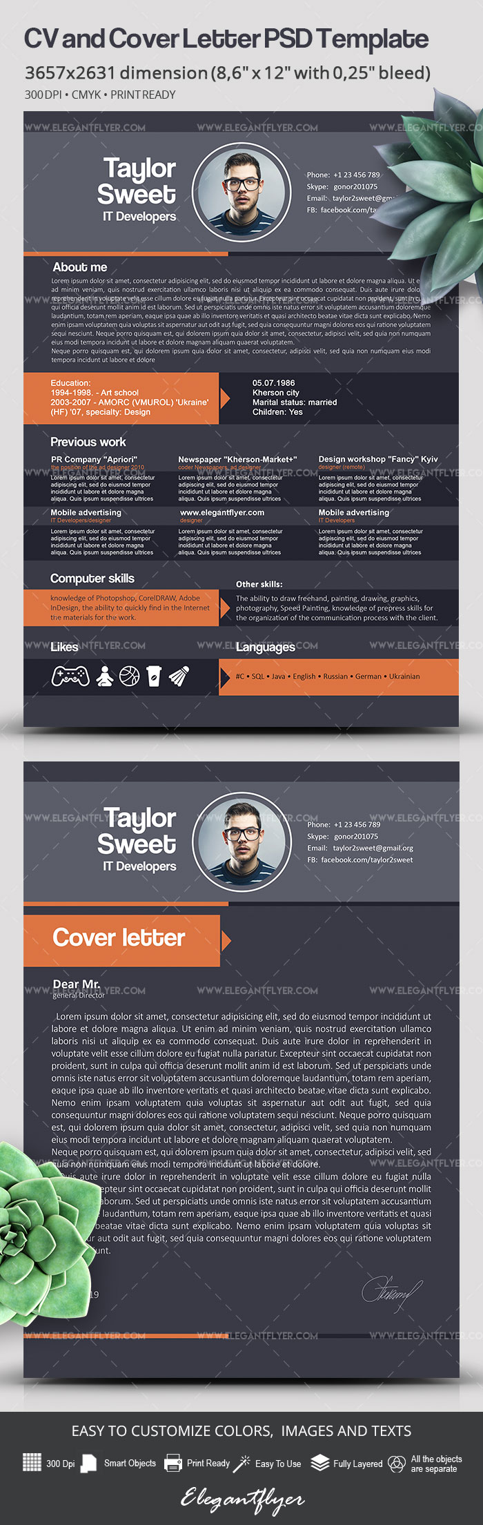 IT Developers – Free CV Template in PSD