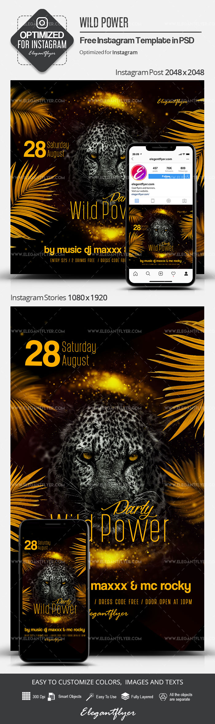 Wild Power Party – Free Instagram Stories Template in PSD + Post Templates