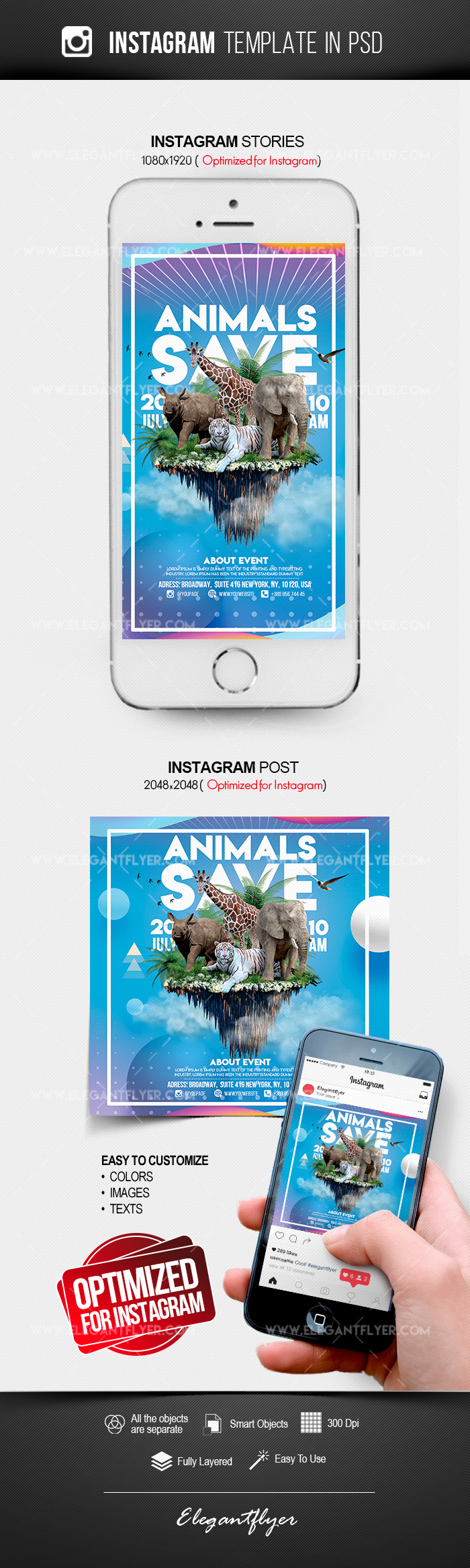 Save the Animals – Instagram Stories Template in PSD + Post Templates