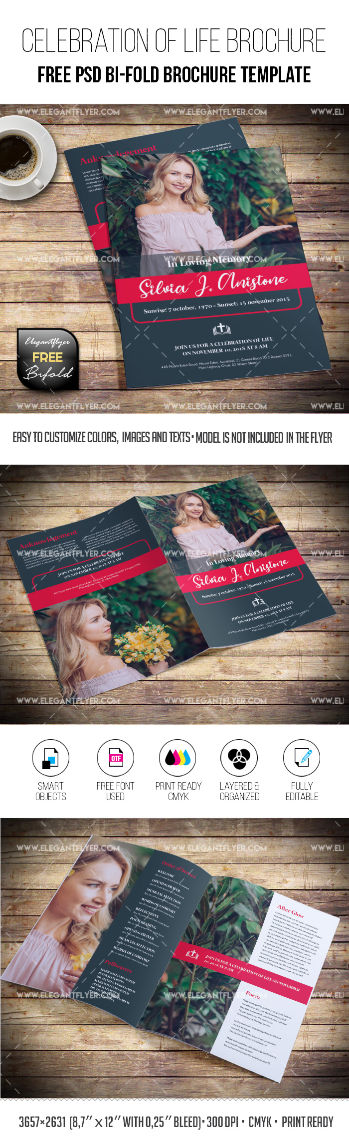 Celebration of life – Free Funeral Brochure Template