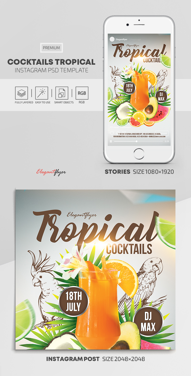 Cocktails Tropical – Instagram Stories Template in PSD + Post Templates