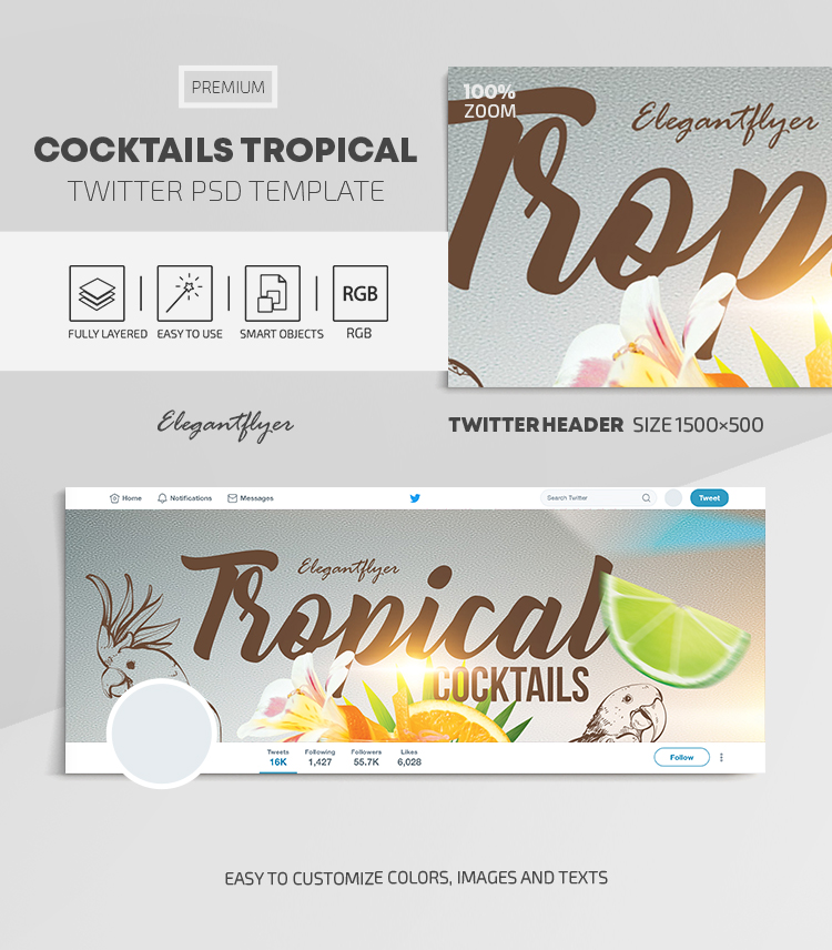 Cocktails Tropical – Twitter Header PSD Template
