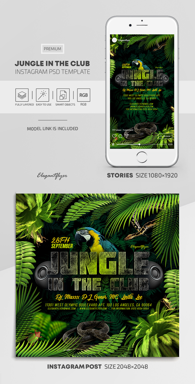 Jungle in the Club – Instagram Stories Template in PSD + Post Templates