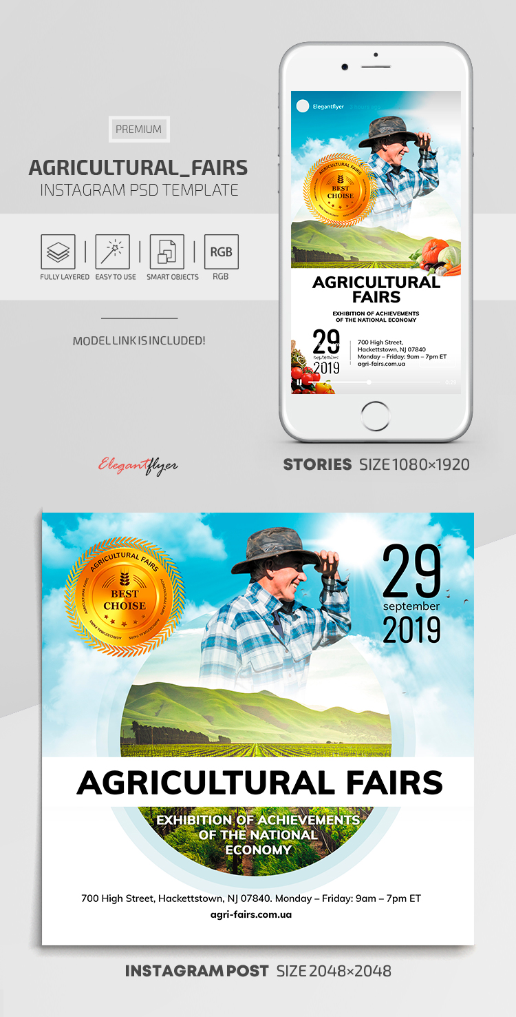 Agricultural Fairs – Instagram Stories Template in Premium PSD + Post Templates