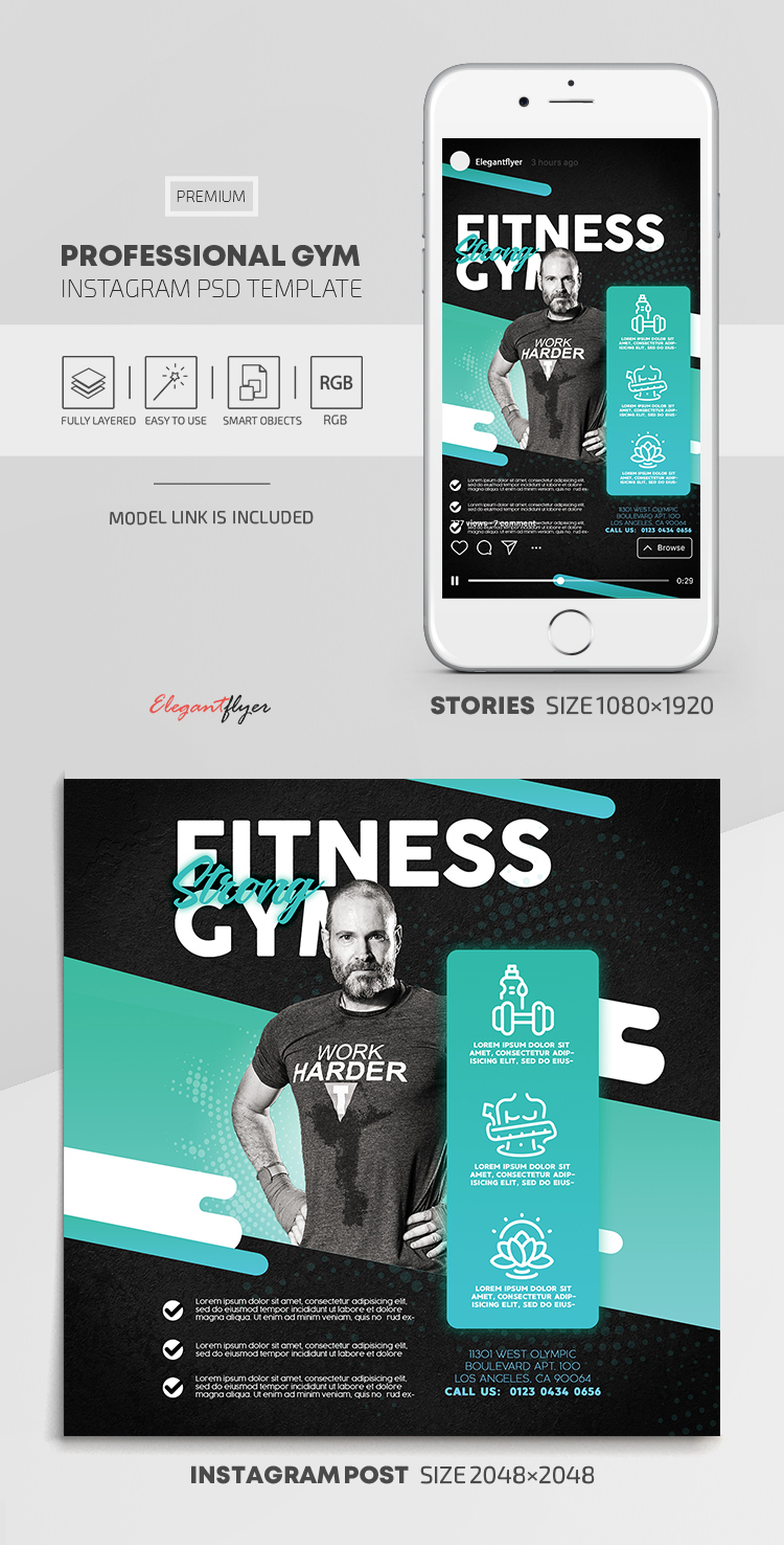 Professional GYM – Instagram Stories Template in PSD + Post Templates