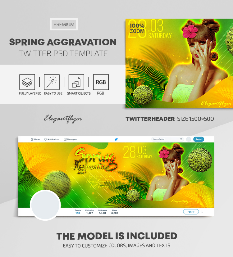 Spring Aggravation – Twitter Header PSD Template