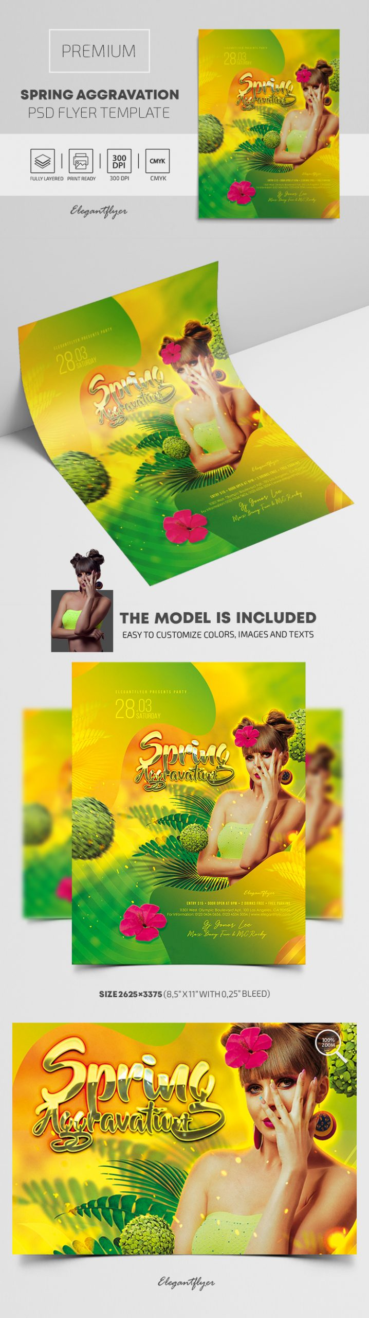 Spring Aggravation – Premium PSD Flyer Template