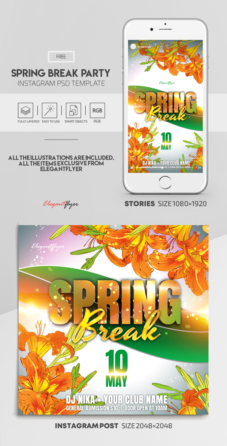 Spring Break Party – Free Instagram Stories Template in PSD + Post Templates