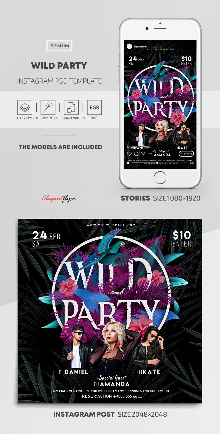 Wild Party – Instagram Stories Template in PSD + Post Templates