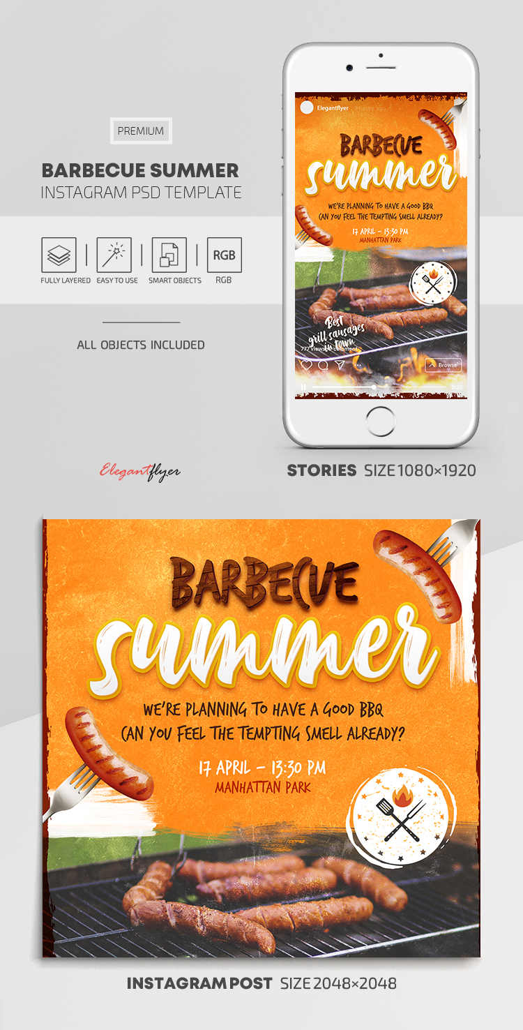 Barbecue Summer – Instagram Stories Template in PSD + Post Templates