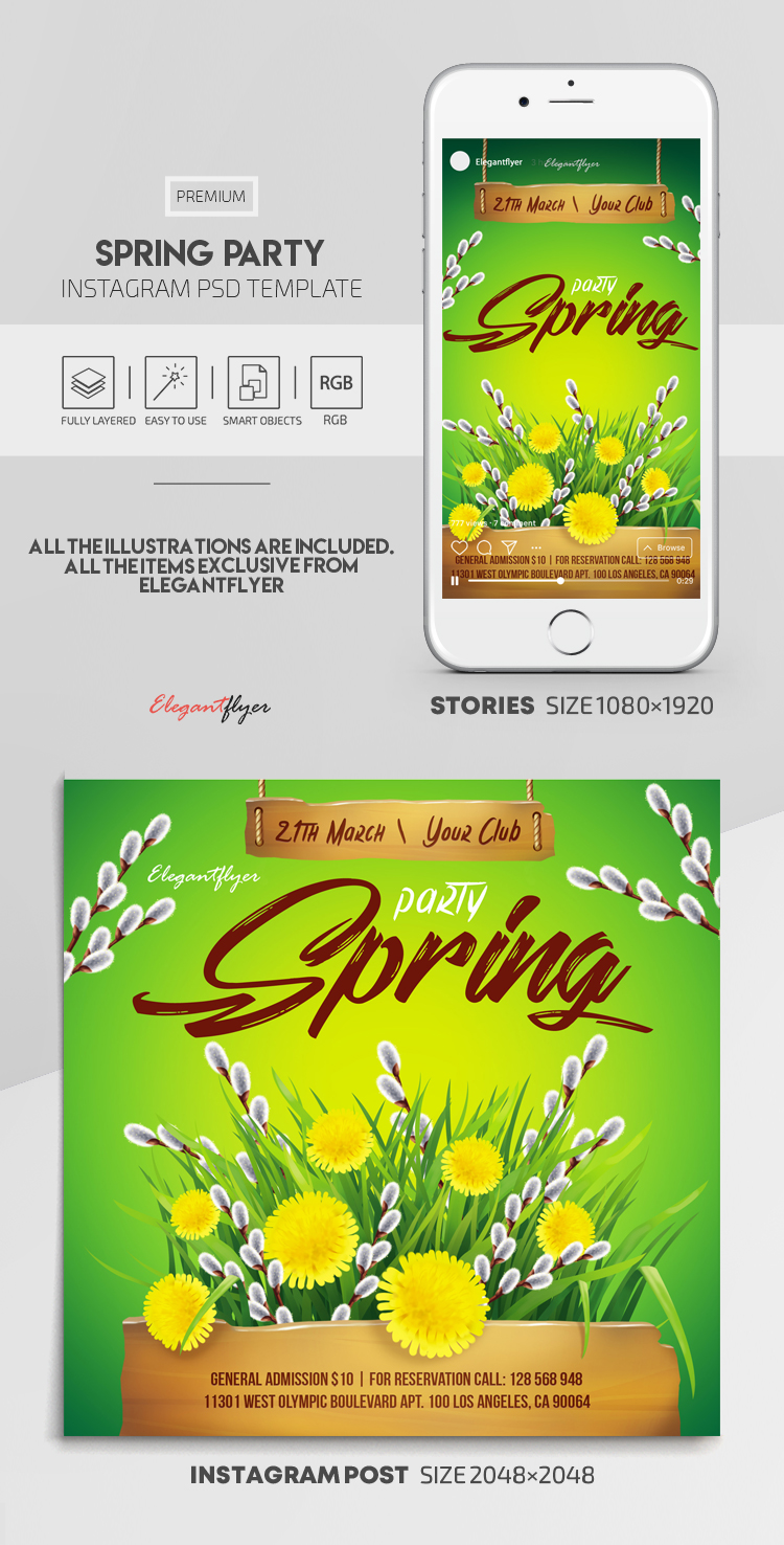 Spring Party – Instagram Stories Template in PSD + Post Templates