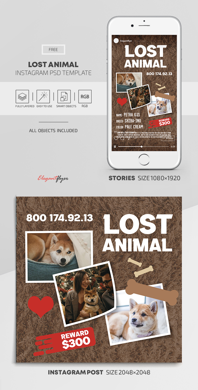 Lost Animal – Free Instagram Stories Template in PSD + Post Templates