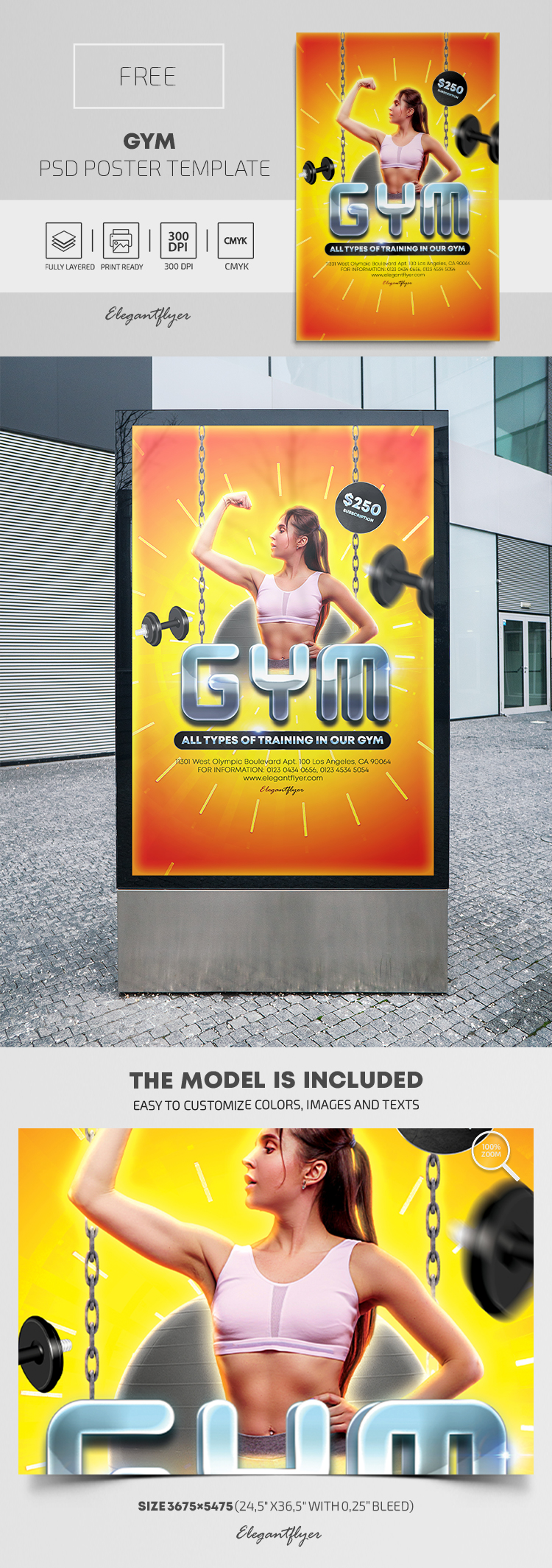 GYM – Free PSD Poster Template