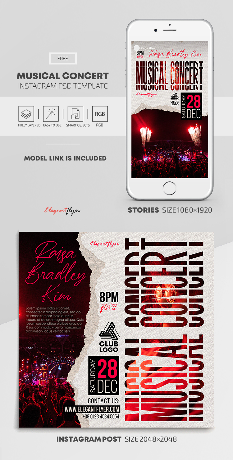 Musical Concert – Free Instagram Stories Template in PSD + Post Template