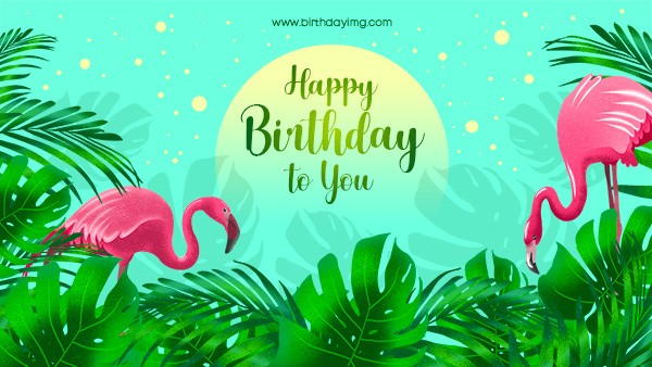 30+ Free Birthday Wallpapers and Images in Hi-Res (Best in 2021)