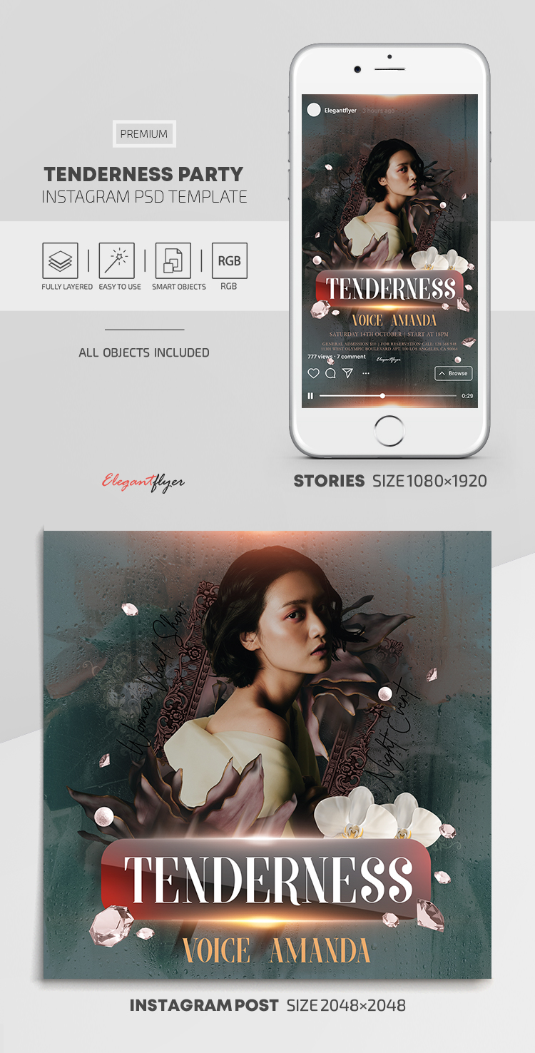 Tenderness Party – Instagram Stories Template in PSD + Post Templates